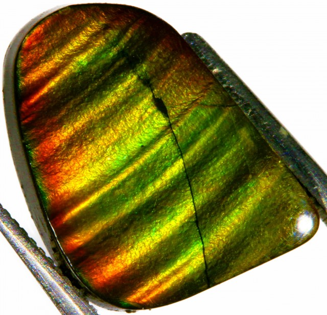 8.20 CTS AMMOLITE STONE FROM CANADA [STS321 ]SH