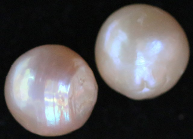 21.55 cts Pair   Ivory/Apricot Pearls  PPP 668
