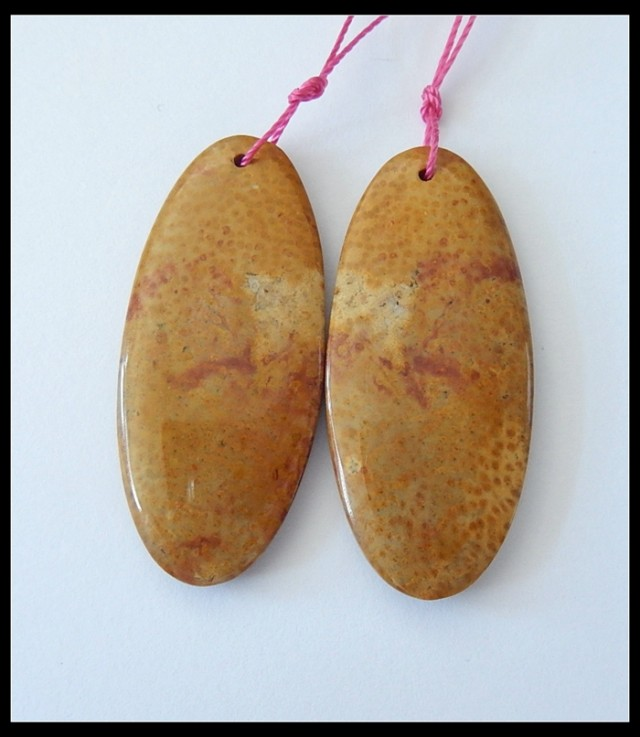 44.5Ct Natural Petridied Palm Wood Earring Beads Pair