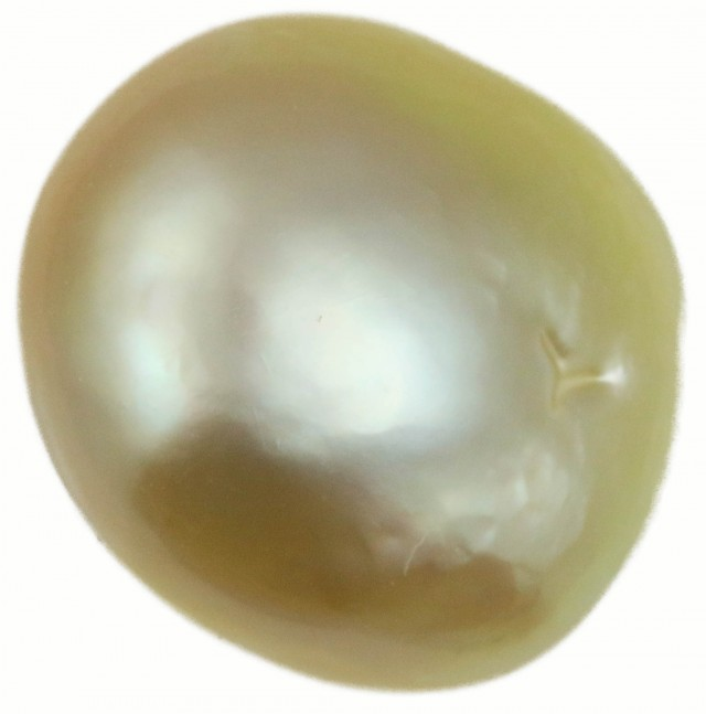 12.4 Cts Golden Freeform Shape Natural Pearl  PPP924