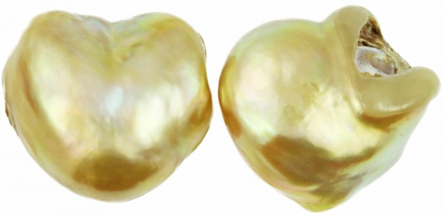 24.3 Cts Golden Freeform Shape Natural Pair Pearls  PPP929