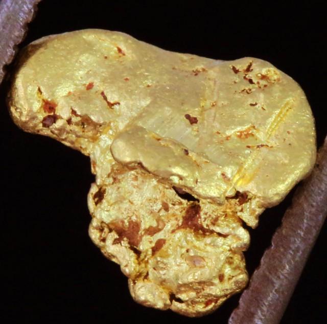 0.90 Grams Kalgoorlie Gold Nugget, Australia LGN 1528
