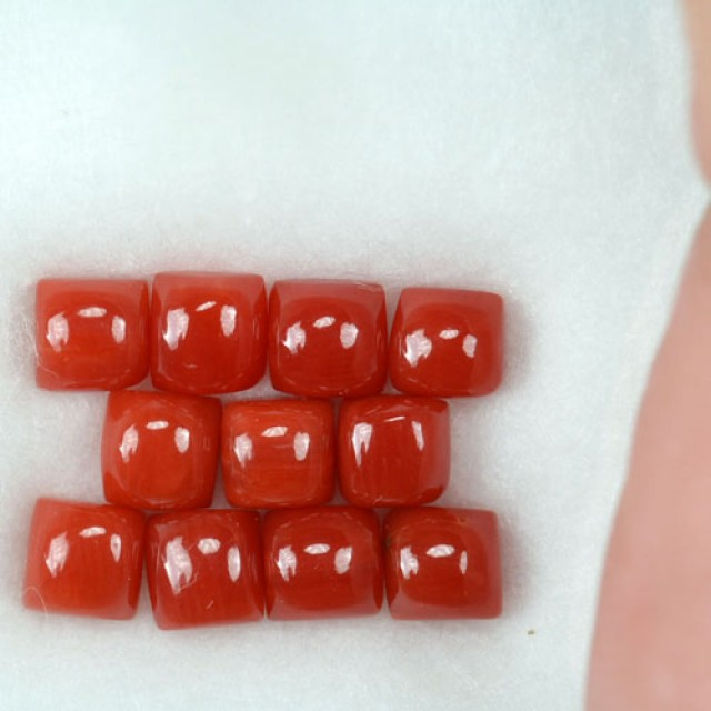 UNHEATED 5.06 Cts Natural Italian Red Coral (4 mm) 11 Pcs Parcel