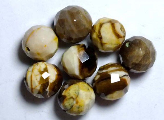 PETRIFIED WOOD BEADS, (8PC) 61.50CTS NP-1037