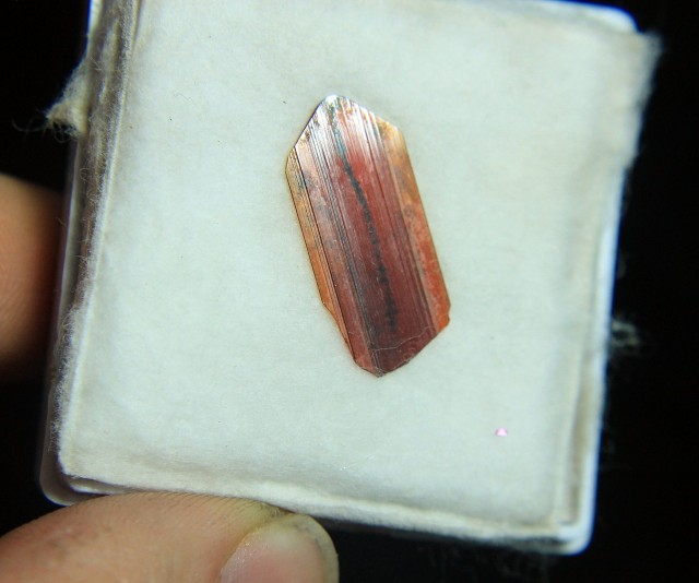 Rare 24 mm long Brookite Crystal From Pakistan Collector's Gem