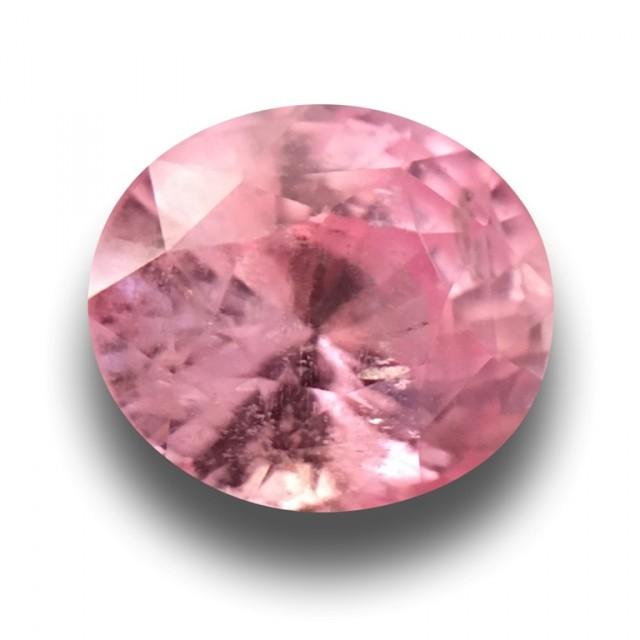 1.59 Carats  Natural Pink Orange Sapphire  Loose Gemstone New Srilanka