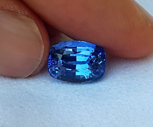 blue coloured cushion available sydney loose cornflower australia sapphire from gems stone king ceylon in fine gemstones