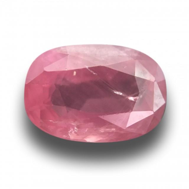 1.62 CTS Natural Redish Pink Orange sapphire |Loose|New Certified| Sri Lank