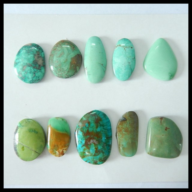 Sell 10pcs Natural Turquoise Freeform Cabochons,16x9x3mm,23x15x4mm,81ct(170