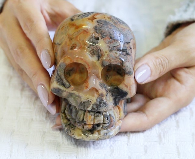 4 Inch Crazy lace Agate Skull  PPP 1322