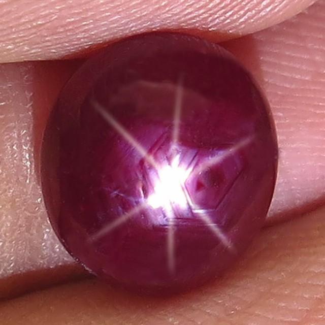 4.28 Carat Star Ruby - Superb