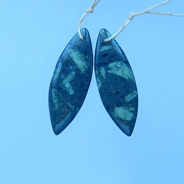 35.5ct Natural Plant Fossil Earring Pair(17071311)