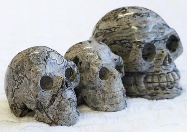 Cute Grey Crazy Agate family Gemstone Skull  PPP 1354