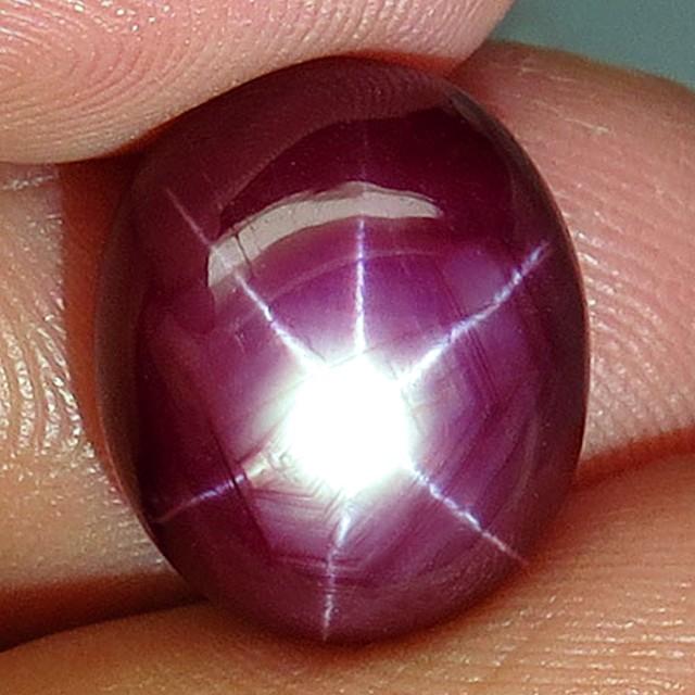 16.06 Carat Vibrant Ruby Star - Superb