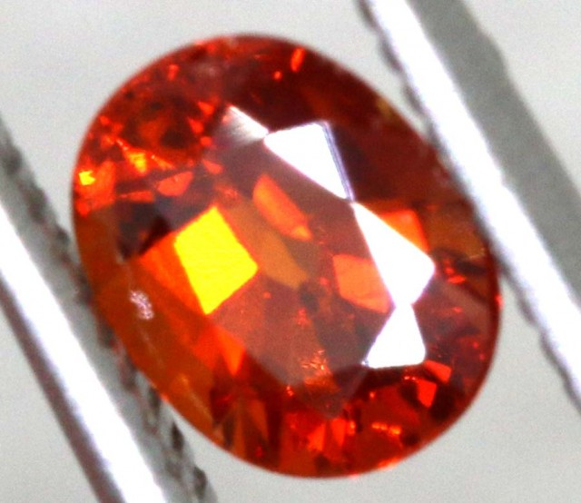 0.95 CTS GARNET FACETED STONE pg-2309