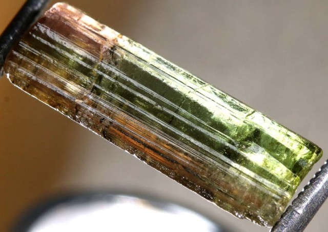 5.35CTS TOURMALINE BICOLOR NATURAL ROUGH RG-2406