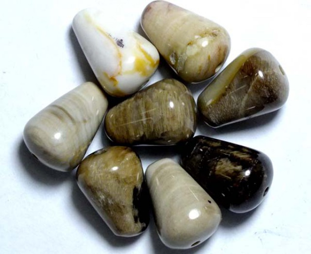 PETRIFIED WOOD BEADS, (8PC) 35.55CTS NP-848