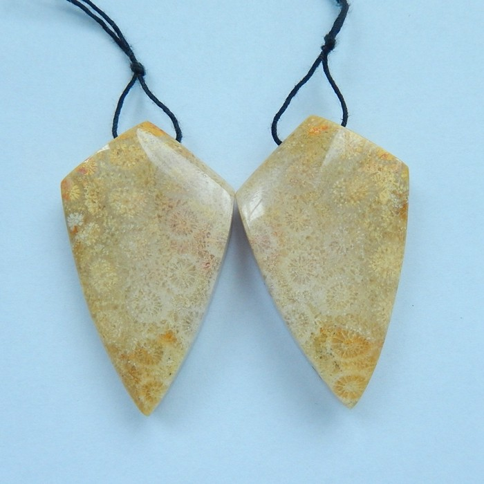 136.5ct Natural Indonesian Fossil Coral Earring Beads(17101505)