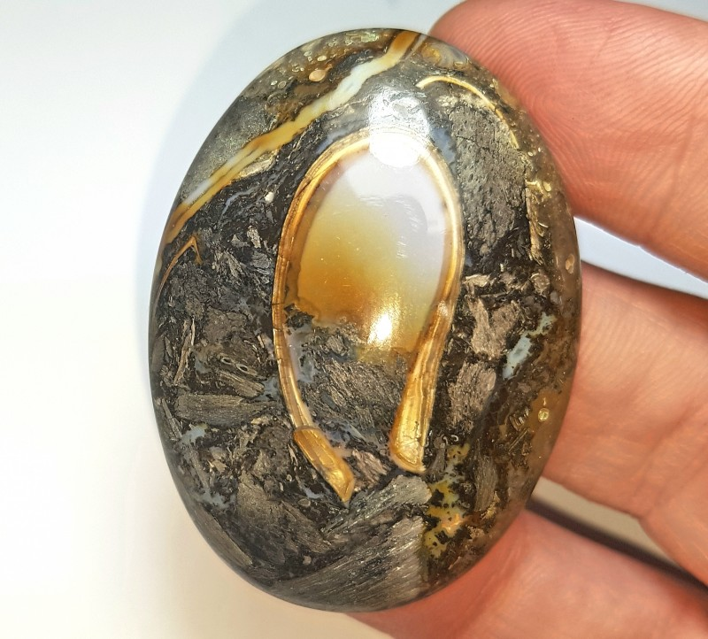 46mm Colus Fossil Agate cabochon oval AAA 95ct