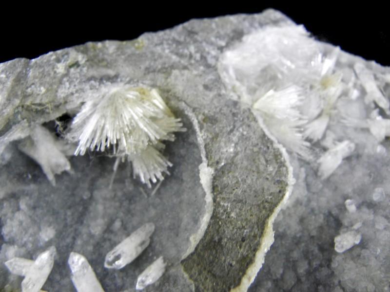 Very Rare Natrolite & Prehnite display specimen from Bombay, India list