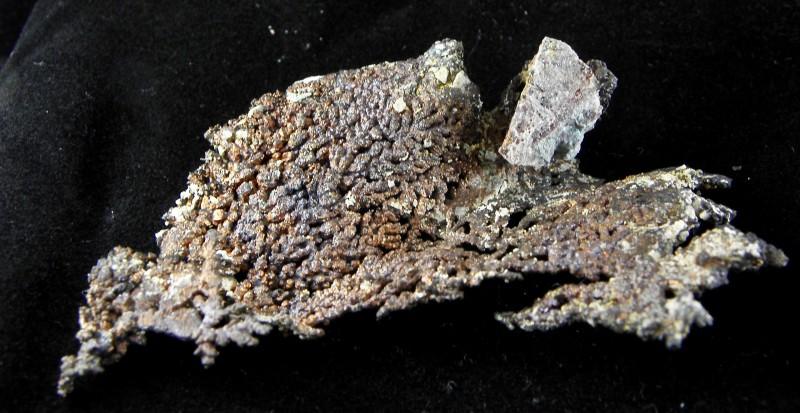 Native Copper Arborescent Ray Mine Pinel co., Arizona list $250.00