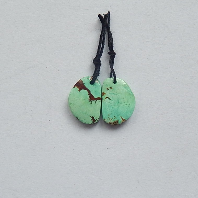13.5ct Natural Green Turauoise Earring Pair(18031912)