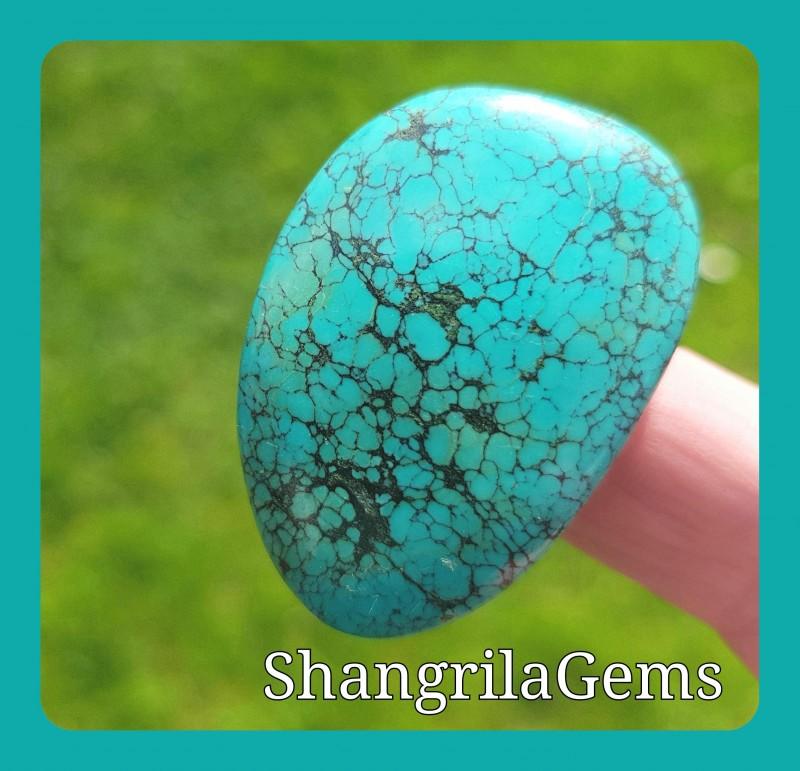 40mm Tibetan Turquoise free form  CABOCHON 62ct