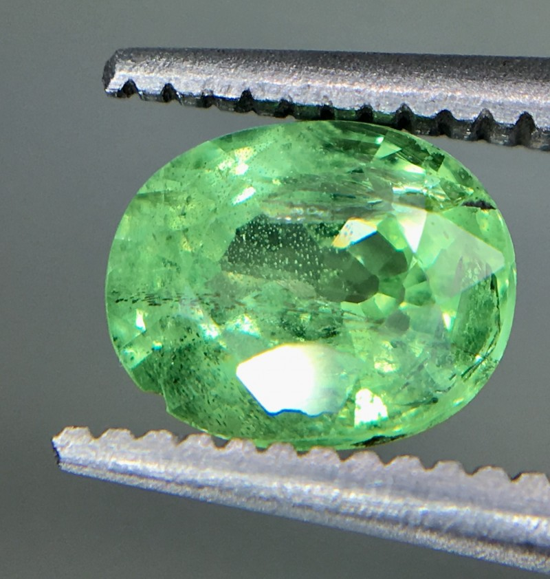 0.95 Crt Tsavorite Faceted Gemstone