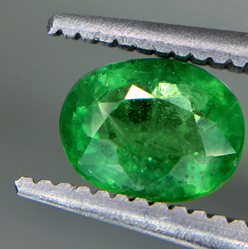 1.0 Crt Tsavorite Faceted Gemstone