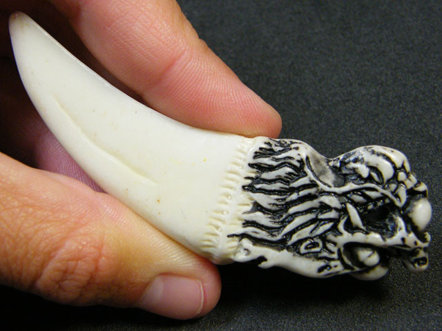 HIPPO TOOTH WITH DRAGON HAND CARVING 100 CTS  SGS 92