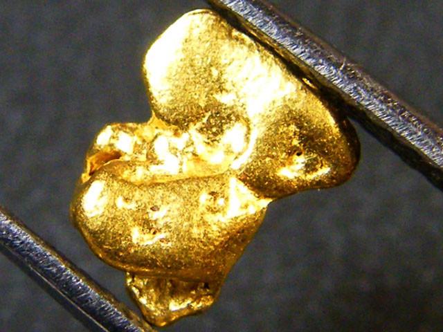 AUSTRALIAN GOLD NUGGET .69  GRAMS  LGN  159