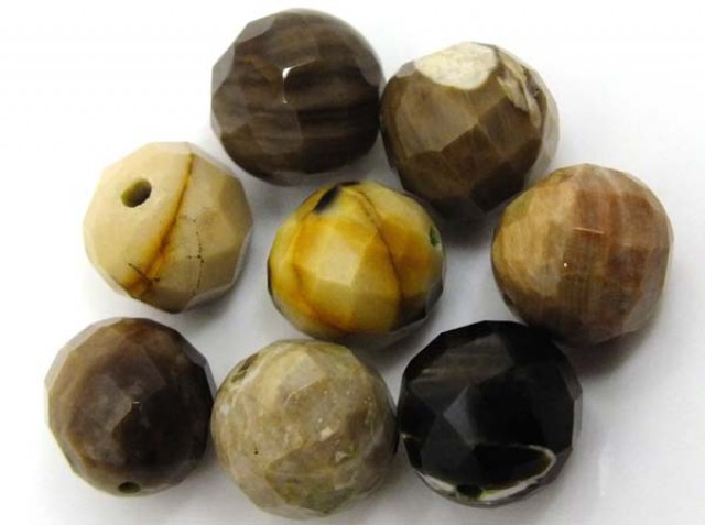 PETRIFIED WOOD BEADS, (8 PC) 63  CTS  NP-1192
