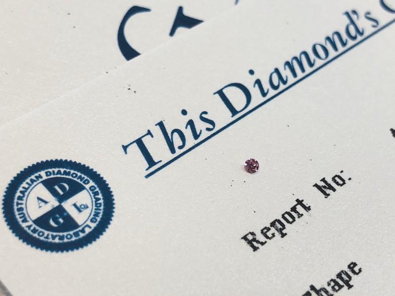 0.013ct 5P I1 Certified Argyle Pink Diamond
