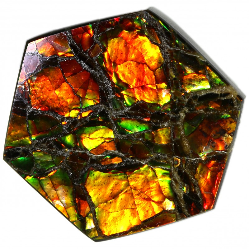 9.15 CTS AMMOLITE STONE FROM CANADA [SAFE110]