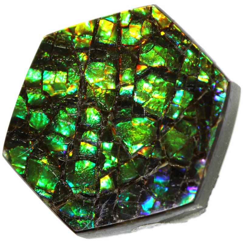 9.25 CTS AMMOLITE STONE FROM CANADA [SAFE113]