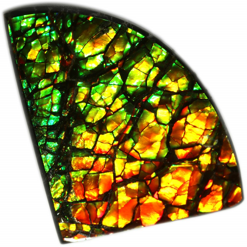 13.55 CTS AMMOLITE STONE FROM CANADA [SAFE128]