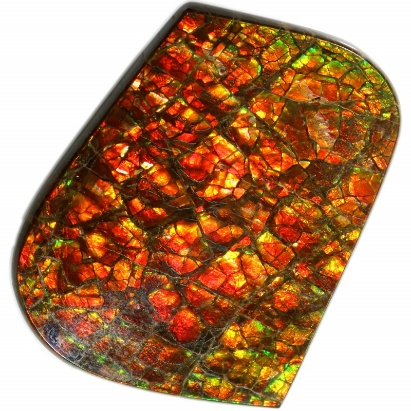 39.10 CTS 2 SIDES AMMOLITE STONE FROM CANADA [SAFE148]
