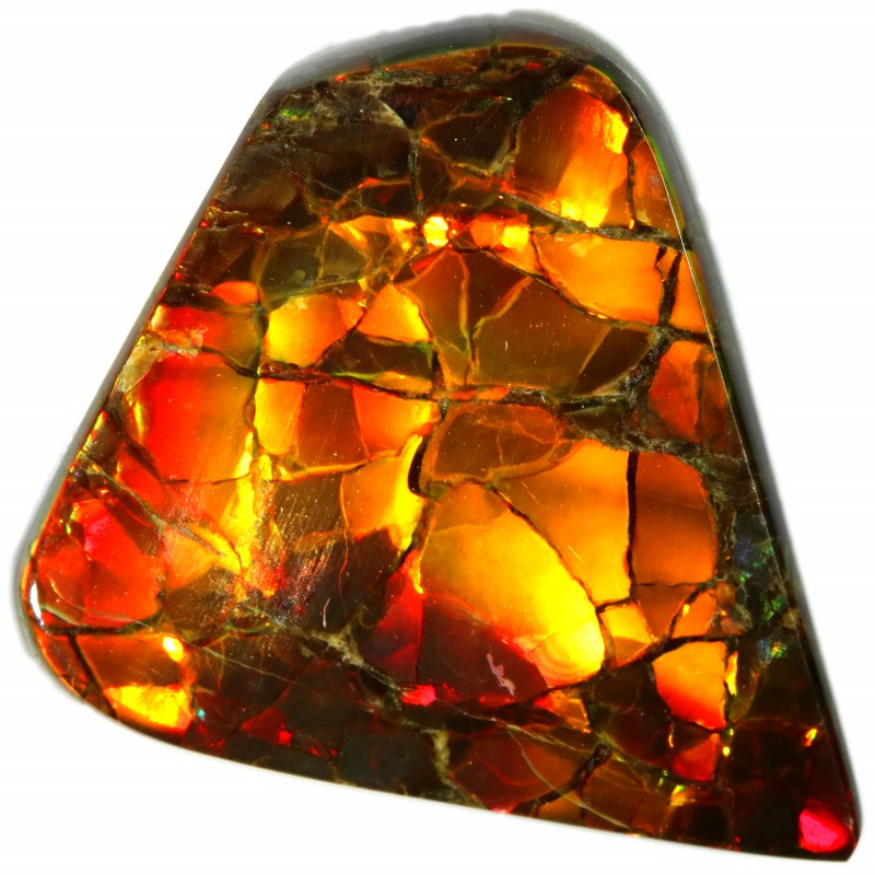 13.70 CTS 2 SIDES AMMOLITE STONE FROM CANADA [SAFE150]