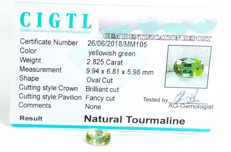 Certified|CIGTL~2.825 Cts Museum Grade Green color Tourmaline Gems