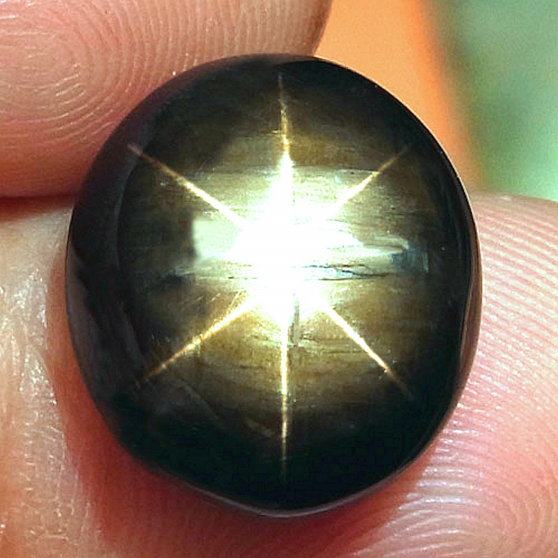 14.67 Carat Black Star Sapphire - Superb