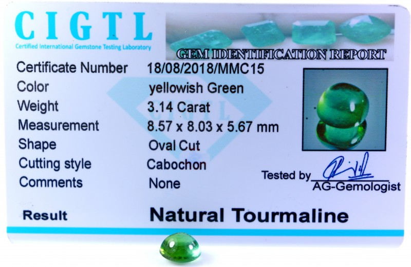 Certified|CIGTL| ~3.14 Cts Museum Grade Green color Tourmaline Cab