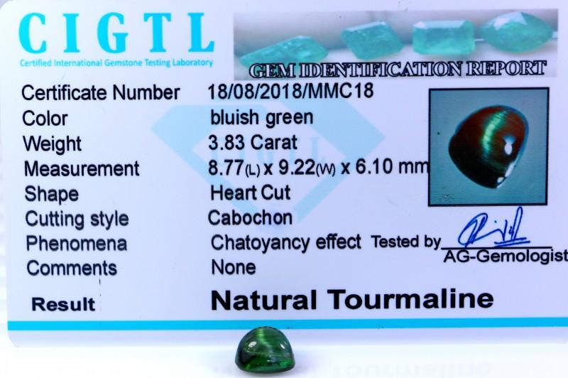 Certified|CIGTL| ~3.83 Cts Museum Grade Green color Tourmaline Cab