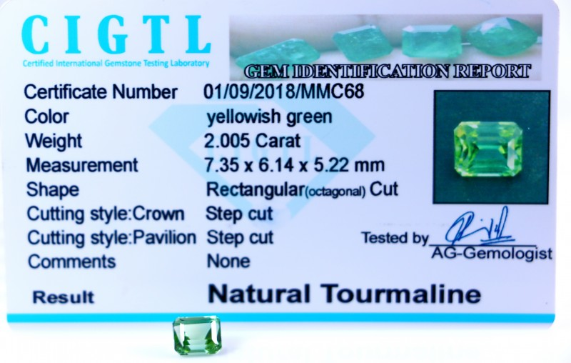 Certified|CIGTL| ~2.005 Cts Museum Grade Green color Tourmaline Gem
