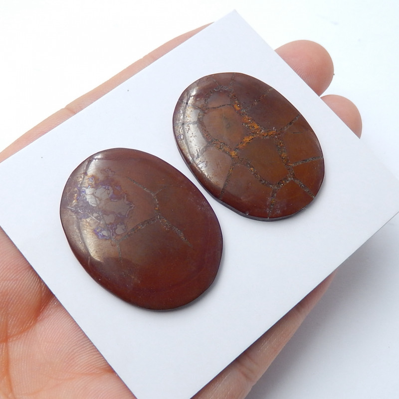 60cts New arrival turtle agate gemstone cabochon pairs (A583)
