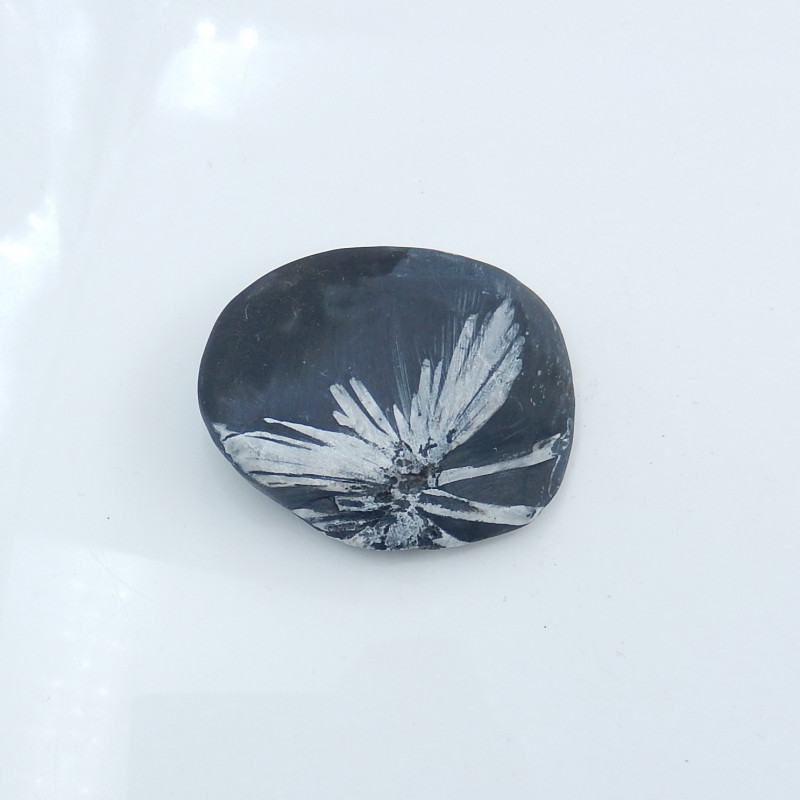 New Arrival Natural Chrysanthemum Gemstone Pendant Polished Gem Black H