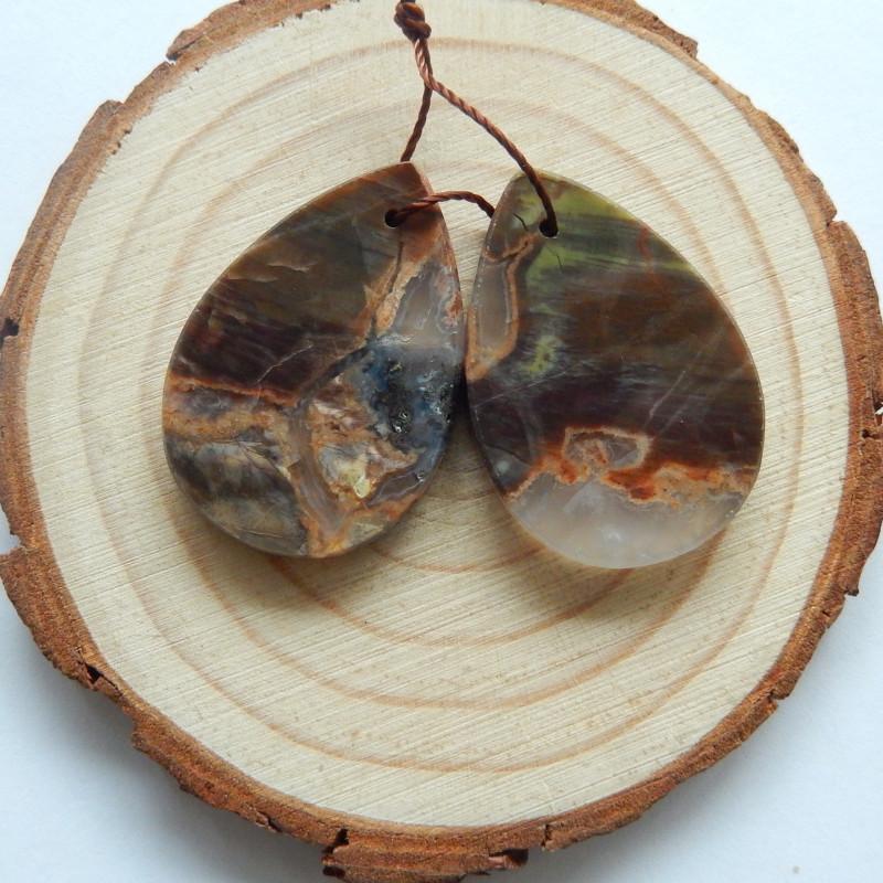 26.4cts Mushroom Jasper earrings ,tear drop earrings ,healing stone (A746)