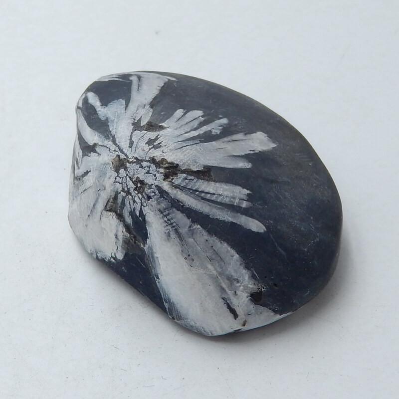 Chrysanthemum stone Gemstone Polished Black Healing Stone H3666