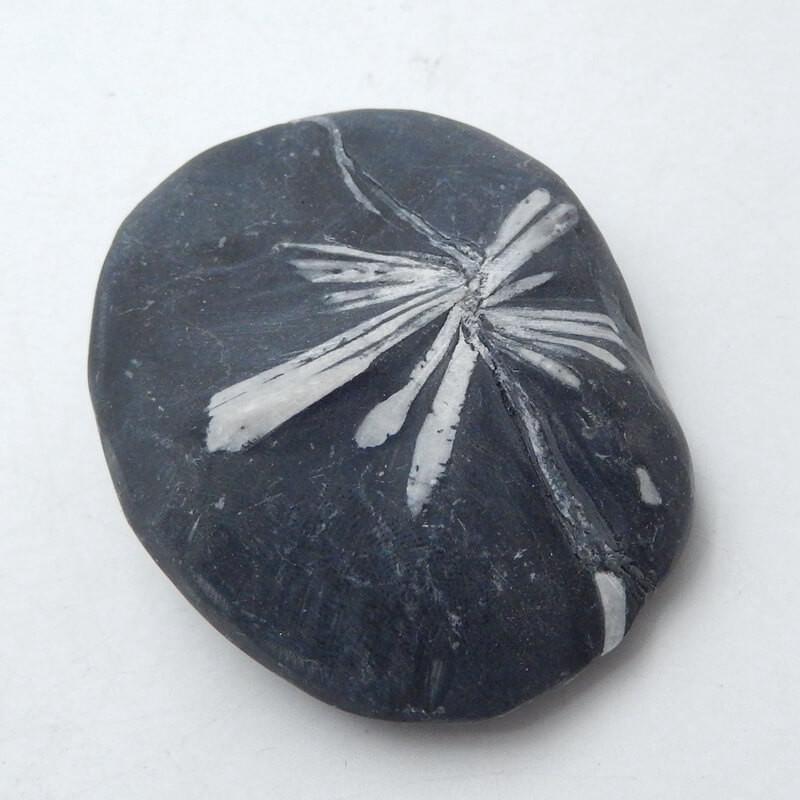 Chrysanthemum stone Gemstone Polished Black Healing Stone H3665