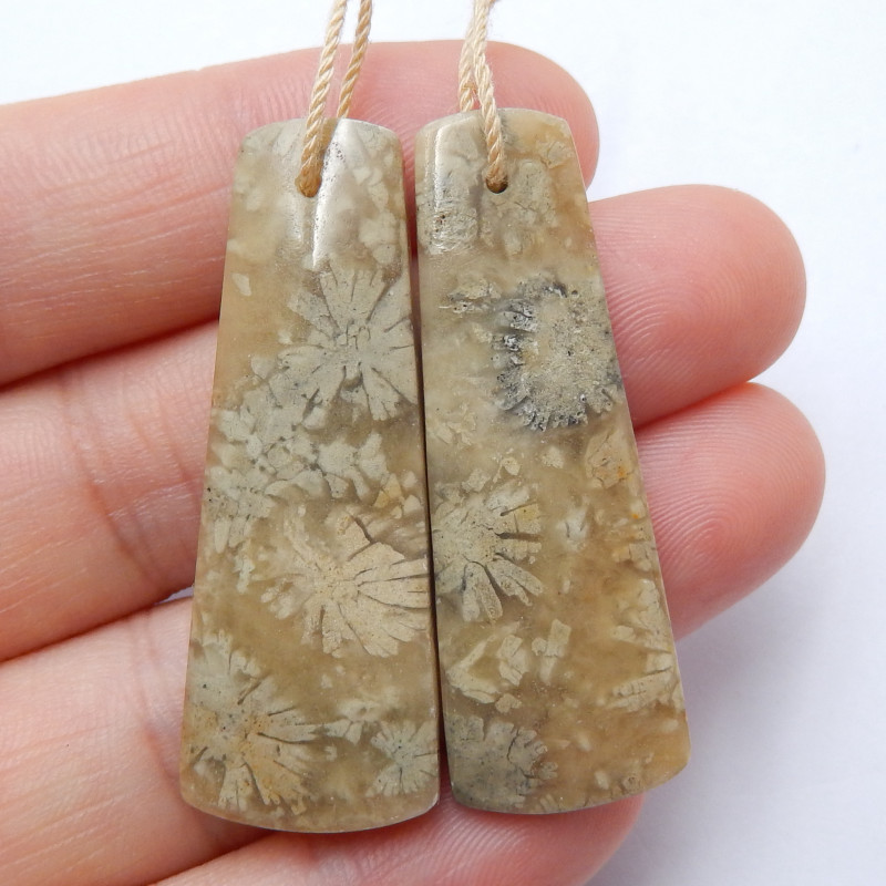 Indonesia's coral Earrings ,Natural Gemstone ,Healing Stone ,Wholesale B625