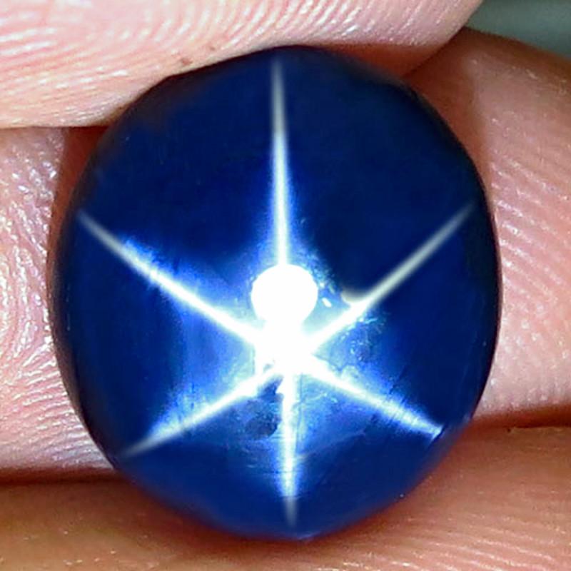 9.31 Carat Southeast Asian Blue Star Sapphire - Gorgeous